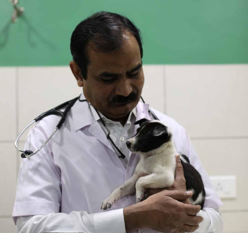 Dr. Milind Hatekar