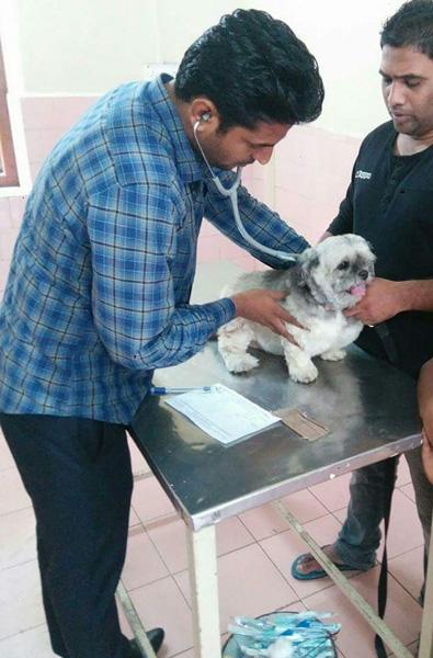 Dr. Kailash