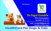 Dr. Sagar Gandole
