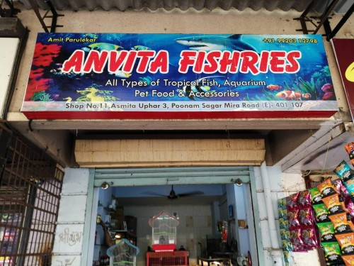 Anvita Fishries