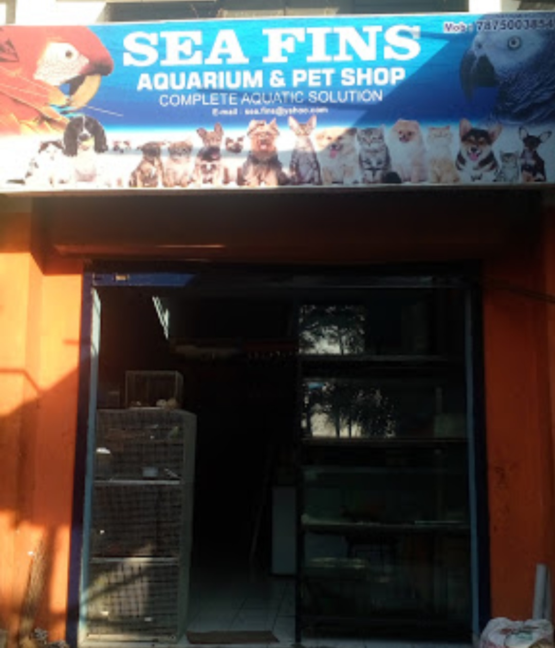 Sea Fins ( Aquarium & Pet Shop )