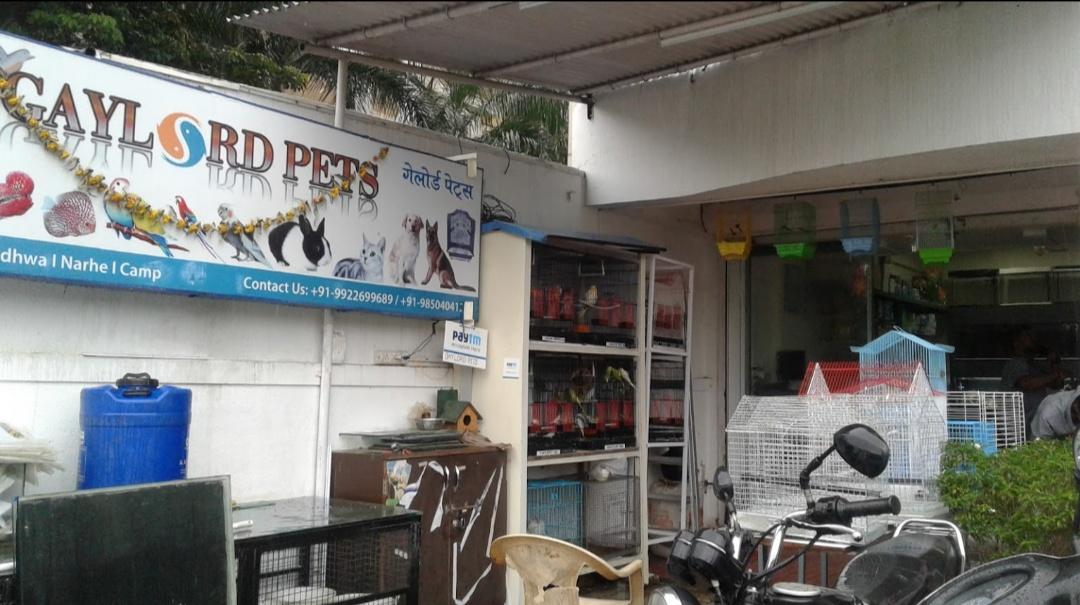 Gaylord Pets Shop