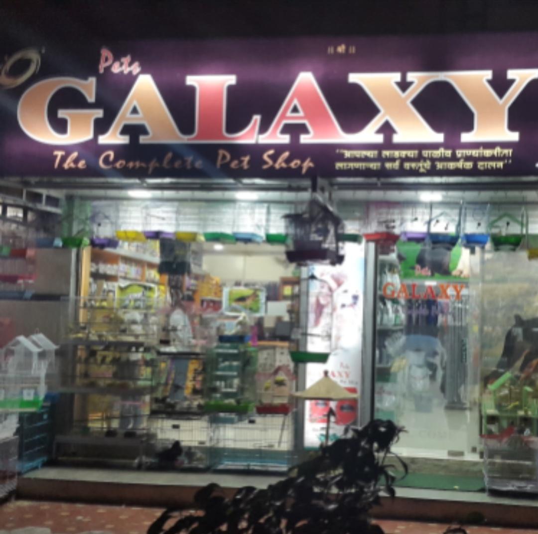 Pets Galaxy