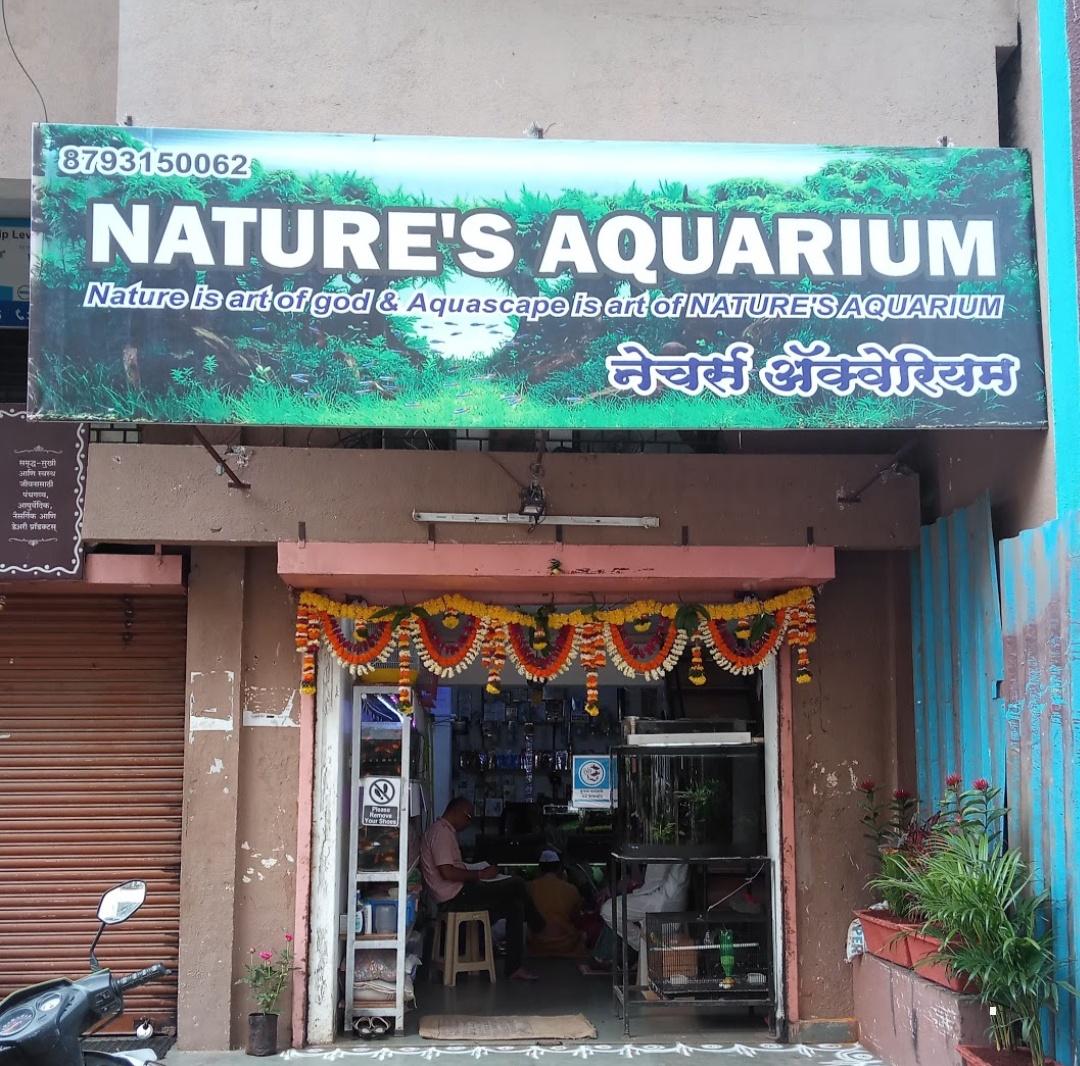 Natures Aquarium