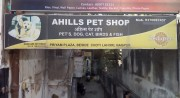 Ahills Pet Shop