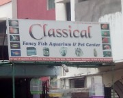 Classical Fancy Fish Aquarium And Pet Center