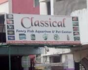 Classical Fancy Fish Aquarium And Pet Center