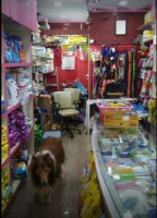 Amikra's Pet Shop