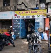 A. N. Pet Shop