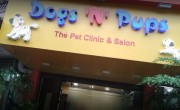 Dogs 'N' Pups | The Pet Shop - Nerul